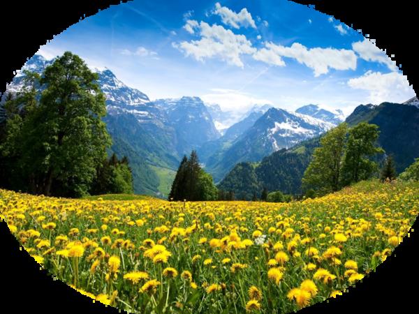 Tube paysage printemps